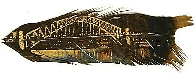 Vintage Souvenir Painted Feather, Sydney Harbour Bridge Picture - Rare MCM