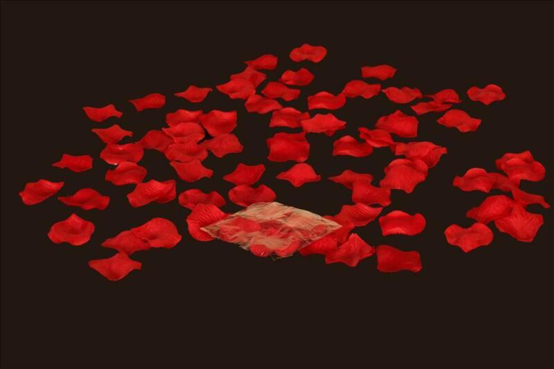 YCC Linens - 5 Pack 100 pcs Silk Rose Petals for weddings and special events
