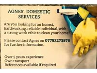 Private cleaner in Sheffield