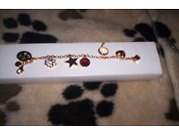 brookes and bentley paw print charm bracelet with 6 print charms