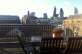 Luxury very large 2-bed flat with terrace and city views in Tower Hill / Aldgate East