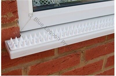 5 Metre White Wall Fence Spikes Anti Climb Security Cat Bird Repellent Deterrent