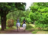 Horse Riding Instructor (full time and part time required)