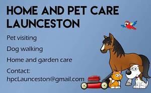 Home and Pet Care Launceston Newstead Launceston Area Preview