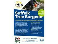 Tree Removal, Felling, Pruning Tree Service