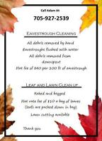 Affordable eavestrough cleaning, leaf removal and more