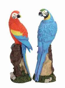 Pair Macaw PARROT OUTDOOR 14