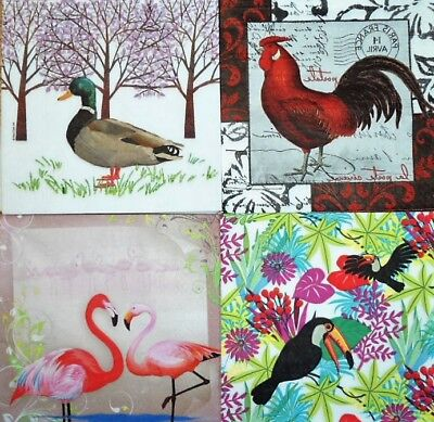 4 x Single Different Napkins Birds mix for Decoupage and Crafting w2