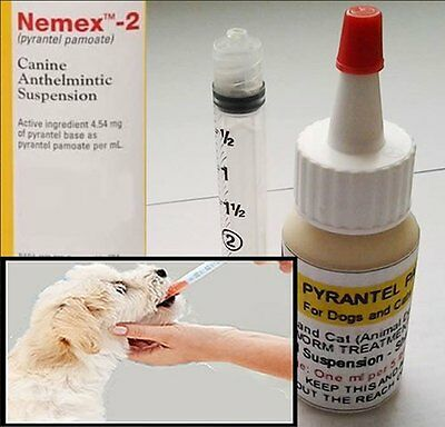 120ml bottle Pyrantel Pamoate Suspension  Dog Cat Wormer FREE SHIPPING Nemex-2