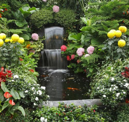 Hat nicht jeder: der Wasserfall im eigenen Garten oder Schrebergarten