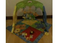 Fisher price activity mat and gym