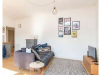 Stylish one bedroom apartment close to