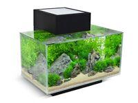 Hagen 'mini' aquarium