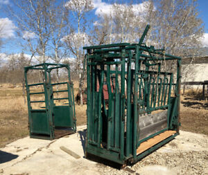 Hi-Hog Cattle Squeeze and Palpation Cage