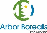 Arbor Borealis tree service