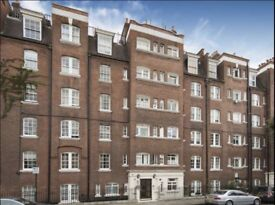 1 Bed Apartment Bloomsbury WC1