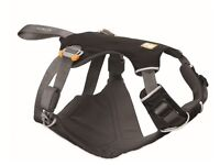 Car harness for dog
