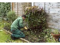 Hire a professional gardener for your garden. Local professionals now in Middleton, Manchester.