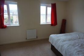 WHITEFIELD ROAD DOUBLE ROOM, SHARED HOUSE