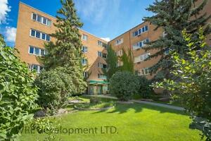 Arizona Plaza: Amazing Suites on Pembina Hwy in Fort Garry!