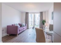 Brand New Superb 1 Bed Bath Rental Apartment - Luxury Living with a Bath Riverside Location