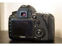 5d mark iii (body only)