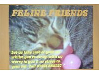 FELINE FRIENDS PET SITTING SERVICE - NOW TAKING XMAS BOOKINGS