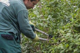 Gardening teams needed in Warrington! Competitive Rates -- Flexible Schedule -- Booked Jobs