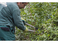 Gardening teams needed in Warrington! Competitive Rates -- Flexible Schedule -- Booked Jobs