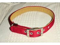 Strong Red Padded Canac Dog Collar for Large Dog, vgc, 1 inch wide & fit neck 19 - 22 inches, Histon