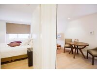 LOVELY FLAT CENTRAL LONDON **** DECEMBER HOLIDAY *********ZONE 1