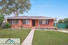 Immaculate Single level Family Home Mount Druitt Blacktown Area Preview