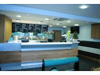 Chef / Fish Fryer required for Busy Fish and Chip shop in Bedminster