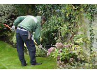 Gardening Services for All Bristol Residents. Affordable Prices! Free Quotes!