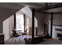 Quality large self contained fully furnished studio flat - Sefton park area