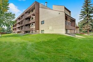 Move In And Save! Two Bed Apartment, Pet Friendly, New W&D!