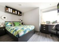 STUDENT ROOMS TO RENT IN LONDON.STUDIO WITH COMFY BED, LOUNGE AREA AND THEATRE