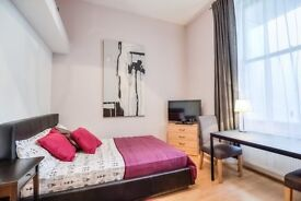 XMAS DEAL AMAZING STUDIO FLAT FOR 75 POUNDS A NIGHT-PERFECT LOCATION FROM 19 TILL 27 OF DECEMBER
