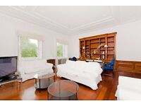 Huge 1 bedroom flat - over 1000 Square Feet - next to Hyde Park!!!!