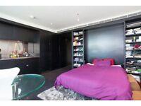 ** Pan Peninsula** Fantastic 1 Bedroom Studio Apartment to Rent - E14, E15, E16 - JE