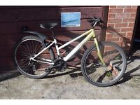"Decathlon Vitamin Ladies Mountain Bike. 15"" Frame.8 Speed. Serviced.All Working.(24.2)"