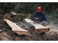 Looking for Tree Work/Outdoor work.