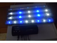 led lights and aquaray multi control 8