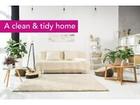 Domestic House Cleaning Service