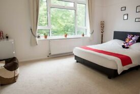 Bright,large 1 double bedroom flat, N12 - 7mins from West Finchley tube,bus station/shops - £1200pm