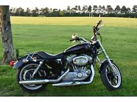 Harley Davidson Sportster XL883L SUPER LOW