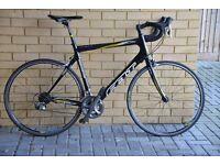 Felt Z35 Carbon Fibre Sportive bike - 61cm frame size (2008 model - upgraded components)