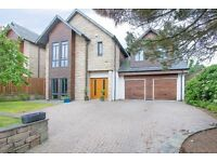 Beautiful 4 bedroom detached house in Broughty Ferry available now