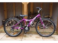 Girls Giant MTX 225 mountain bike 24""