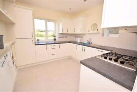 3 Double Bedroom House Share available Bideford
